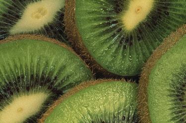 Kiwi, Actinidia chinensis.