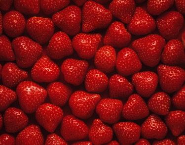 Strawberry, Fragaria x ananassa.