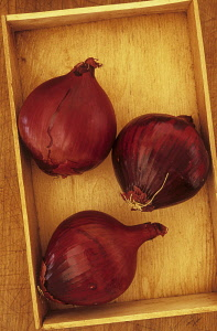Onion, Allium cepa 'Red Baron'. Studio shot of three red onion lying in wooden tray on wood board.