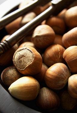 Hazel, Cob-nut, Corylus avellana, Mass of brown coloured nuts next to cracker.