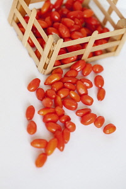 Wolf berry, Goji berry, Lycium barbarum, Studio shot of red coloured fruit.