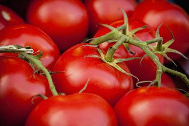 Tomato, Solanum Lycopersicum, Organic tomatoes on display in maket.