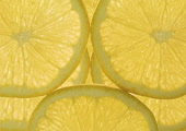 Lemon, Citrus limon.
