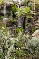 Chelsea Flower Show 2013, Trailfinders Australian garden, Flemings nurseries, Designer Philip Johnson. Gold medal and Best in Show