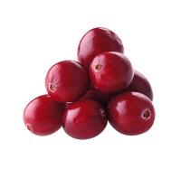 Cranberry, Vaccinium oxycoccos.