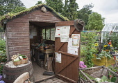Allotment. Hampton Court, 2009. Winchester Growers, The Growing Tastes allotment garden with open shed with planted, living roof, displaying prizes for growing on door, raised beds and harvested produ...