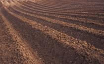 DeepFurrows, Ploughed field.