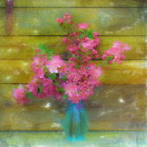 Apple, Malus domestica, Still life vase of apple blossom as a colourful artistic representation.