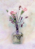 Rose, Rosa, Vase pf pink flowers as a colourful artistic representation.