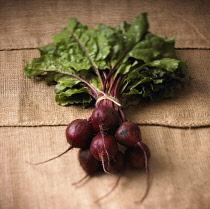 Beetroot, Beta vulgaris, Studio shot of red coloured vegtables.