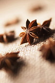 Star anise, Illicium, Studio shot of brown coloured spice.