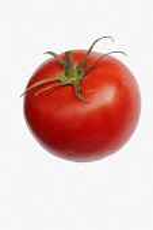 Tomato, Beef tomato, Lycopersicon cultivar, Studio shot of red fruit against white background.