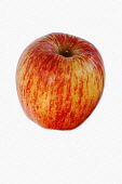 Apple, Cameo Apple, Malus domestica 'Cameo' Studio shot of red fruit against white background.