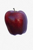 Apple, Apple 'Red Delicious', Malus domestica 'Red Delicious', Studio shot of red fruit against white background.