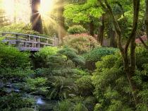 Bridge and stream, Portland Japanese Garden, Oregon, USA.
