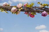 Rose, Rosa, Hanging floral decorations weaved into a wicker lattice.