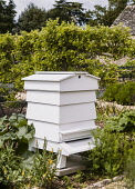 Bee Hive, in kitchen garden.